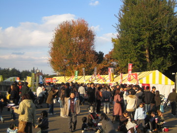 Aoayama2