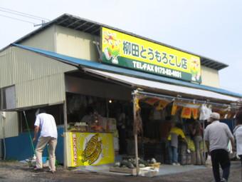 cyokubaijo